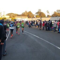 some of the elite runners